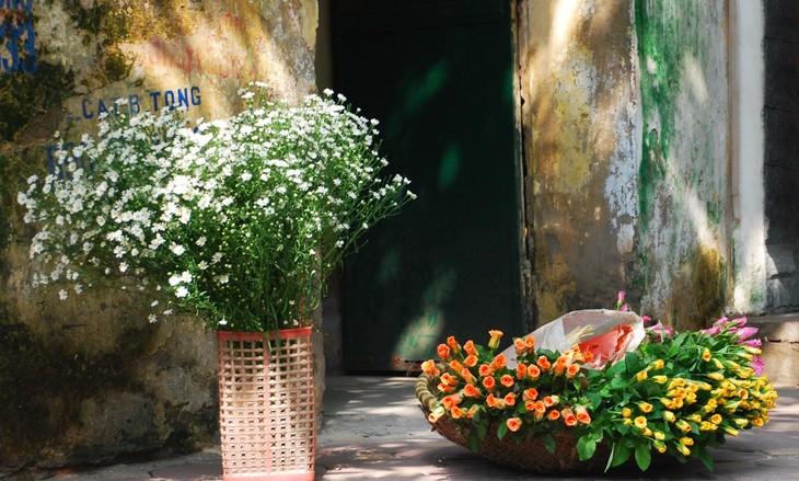 Autumn in Hanoi - ảnh 12