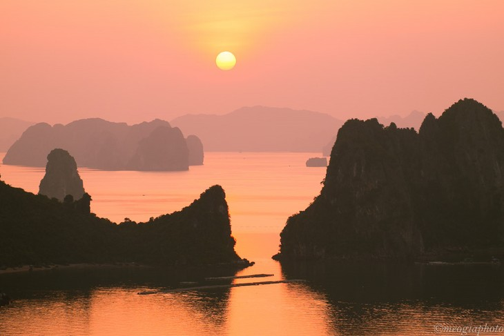 Vietnam tourism promoted  - ảnh 1