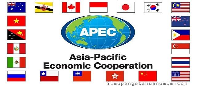 ປຸກລະດົມການເສັງອອກແບບ logo  APEC 2017 ຢູ່ຫວຽດນາມ - ảnh 1