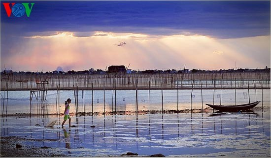 Die romantische Landschaft der Tam Giang Lagune - ảnh 8