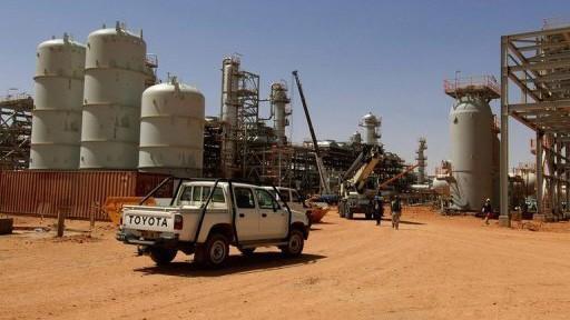 Algerien: Befreiungsversuch der Regierungstruppen beendet  - ảnh 1