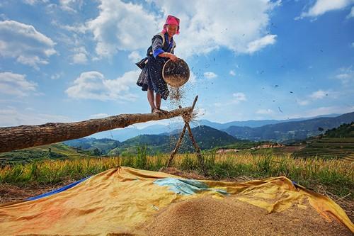 Schöne Momente in der Berggegend Tay Bac - ảnh 9