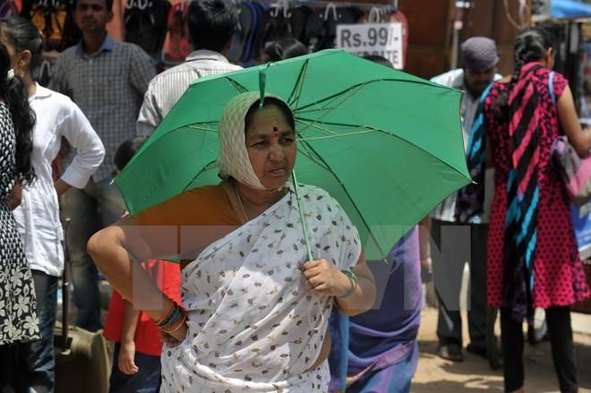 Indien: Die Anzahl der Todesopfer wegen Hitze ist weiterhin gestiegen - ảnh 1