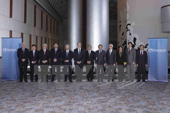 Die TPP-Ministerkonferenz wird in den USA verlängert - ảnh 1