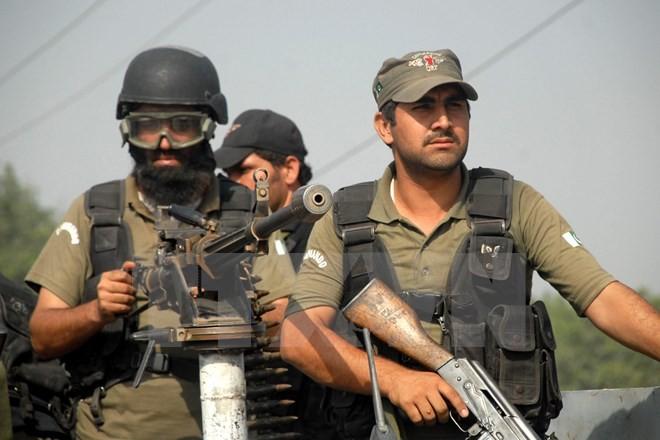 Die USA unterstützen Pakistan mit 265 Millionen US-Dollar zum Kampf gegen Terror und Rebellen - ảnh 1