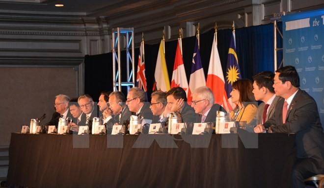 TPP schafft Sprungbrett für vietnamesische Unternehmen - ảnh 1