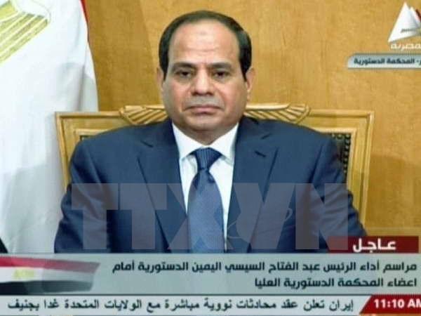 Der ägyptische Präsident ruft seine Landsleute zur Stimmabgabe auf - ảnh 1