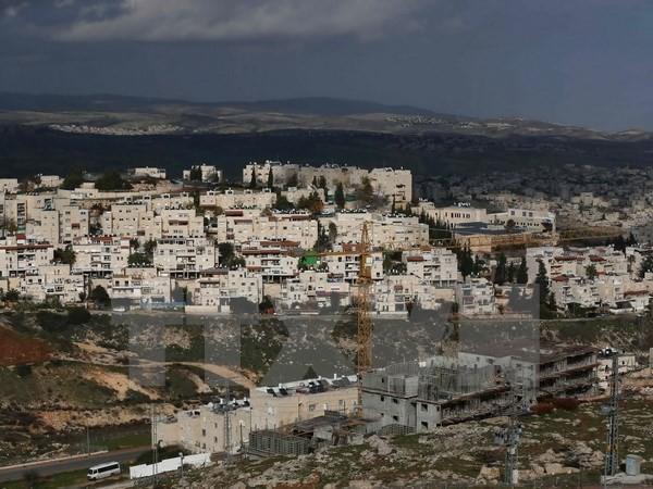 Nahost-Quartett veröffentlicht Bericht über den Friedensprozess - ảnh 1