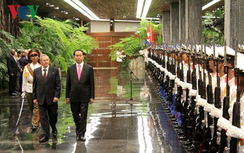 Der kubanische Staatschef empfängt Staatspräsident Tran Dai Quang  - ảnh 1