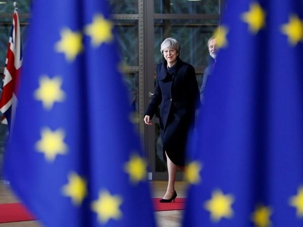 Großbritannien und die EU haben Meinungsverschiedenheit über Bürgerrechte - ảnh 1