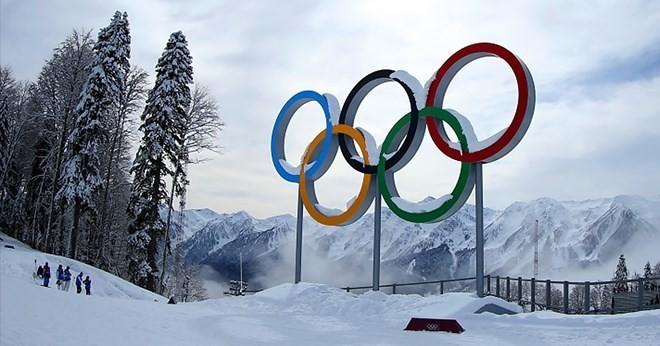 Die Kämpfe bei den Olympischen Winterspiele Pyeongchang wurden offiziell gestartet - ảnh 1