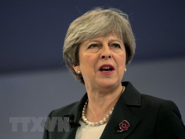 Konservative in Großbritannien fordern einen harten Brexit auf - ảnh 1