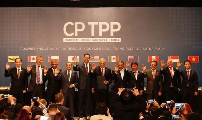 Vietnamesische Unternehmen verhalten sich aktiv für das CPTPP-Abkommen - ảnh 1