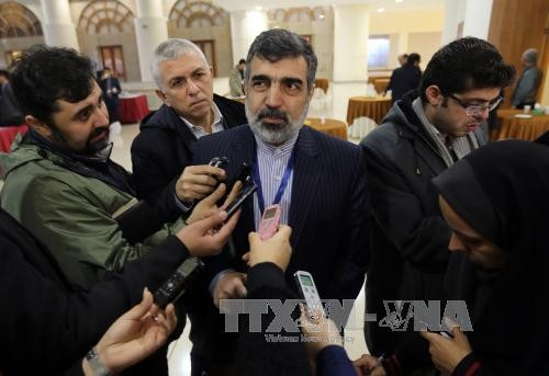 Iran drängt EU zur Entscheidung für Atomabkommen am Ende Juni  - ảnh 1