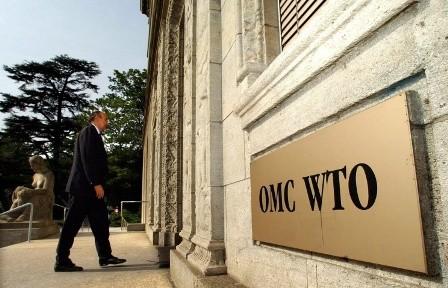 Die USA reichen Klagen gegen Russland bei WTO ein  - ảnh 1