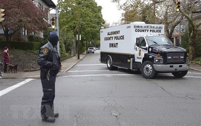 Internationale Öffentlichkeit kritisiert die Bluttat in Pittsburgh in den USA - ảnh 1