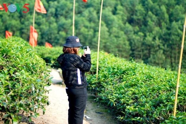 Tee-Insel Thanh Chuong zieht zum Tet-fest Touristen an - ảnh 7
