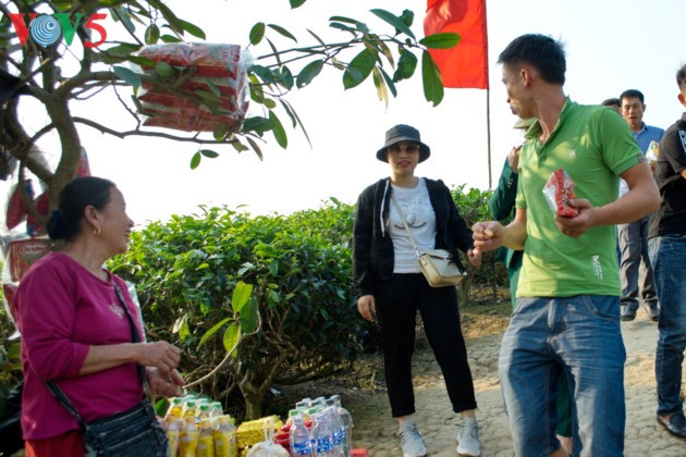 Tee-Insel Thanh Chuong zieht zum Tet-fest Touristen an - ảnh 13