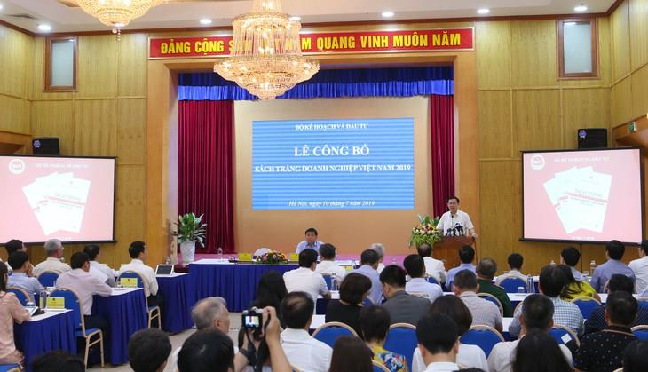 Weißbuch der vietnamesischen Unternehmen 2019 - ảnh 1