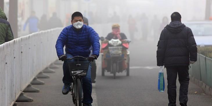 ONU: La pollution de l'air tue une personne toutes les 5 secondes  - ảnh 1