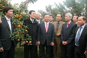 Chủ tịch nước Trương Tấn Sang: Hòa Bình cần phát huy tiềm năng sẵn có để phát triển - ảnh 1