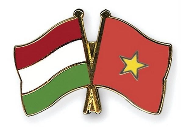 Вьетнам и Венгрия готовы подписать Соглашение об оказании юридической помощи по уголовным делам - ảnh 1