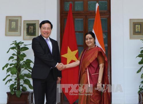 Вице-премьер СРВ Фам Бинь Минь совершил официальный визит в Индию - ảnh 1
