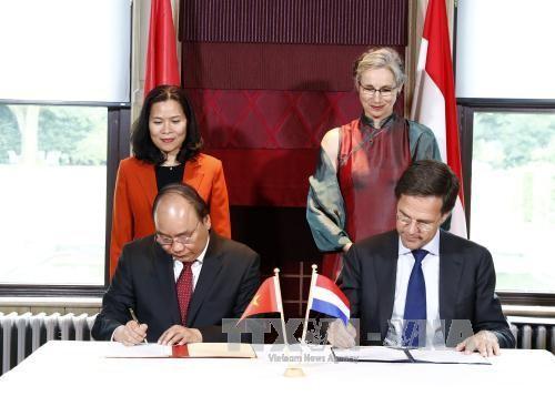Вьетнам и Нидерланды сделали совместное заявление - ảnh 1
