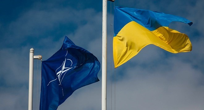Порошенко: Украина и Грузия активизируют сотрудничество в ГУАМ - ảnh 1