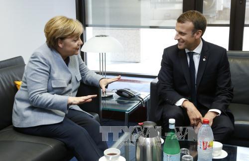 Франция, ФРГ призвали выполнить мирное соглашение на востоке Украины - ảnh 1