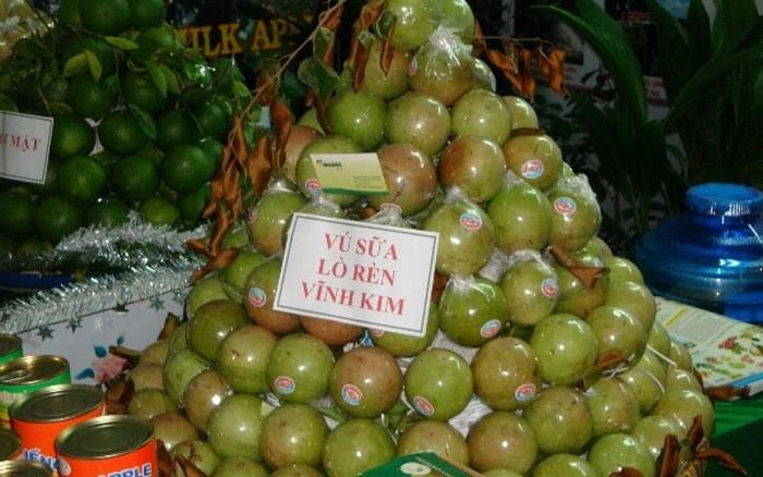 Вьетнам экспортировал в США первую партию звёздчатого яблока бренда «Lo Ren Vinh Kim» - ảnh 1