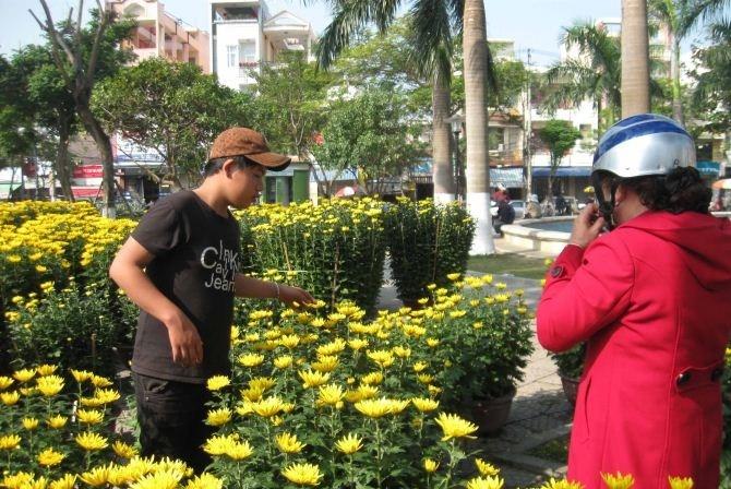 Оживленная предновогодняя атмосфера в разных районах Вьетнама - ảnh 2