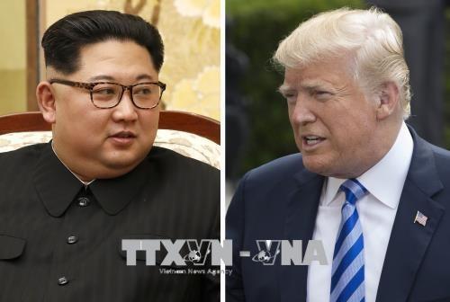Трамп надеется на дальнейшие прорывы после встречи с Ким Чен Ыном - ảnh 1