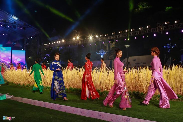 Вьетнамские дизайнеры прилагают усилия для рекламирования национального костюма аозай - ảnh 1