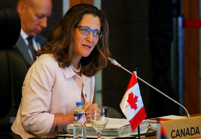 Канада желает участвовать в саммите стран Восточной Азии - ảnh 1