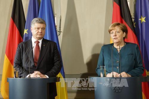 Порошенко и Меркель обсудили по телефону ситуацию в Донбассе - ảnh 1