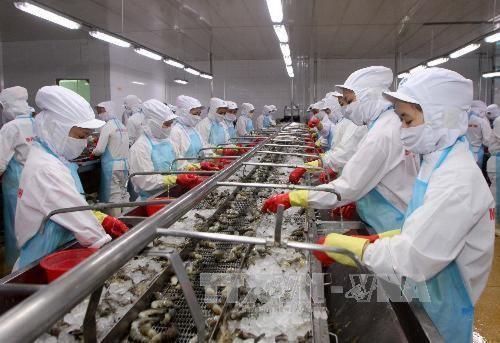 Объем экспорта вьетнамских морепродуктов резко увеличился - ảnh 1
