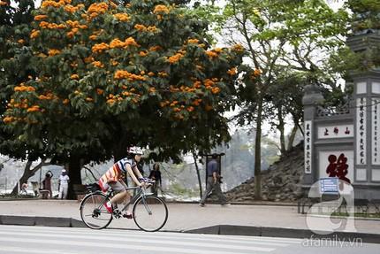 Езда на велосипеде – новый тренд вьетнамской молодежи - ảnh 2