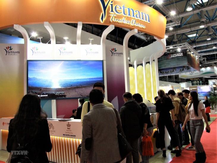 Российские туристы интересуются морским туризмом во Вьетнам - ảnh 1