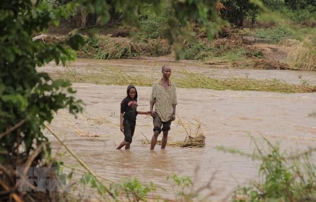 """В Мозамбике около 15 тыс. человек отрезаны от внешнего мира после циклона """"Идай"""" - ảnh 1"""