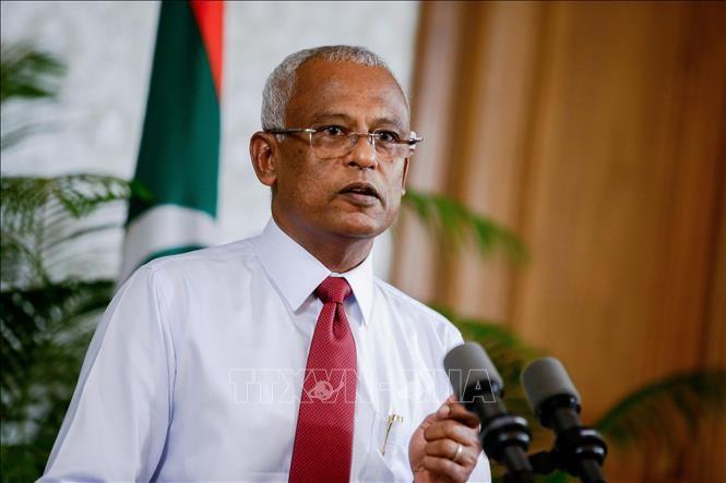 Демократическая партия Мальдив одержала победу на парламентских выборах - ảnh 1