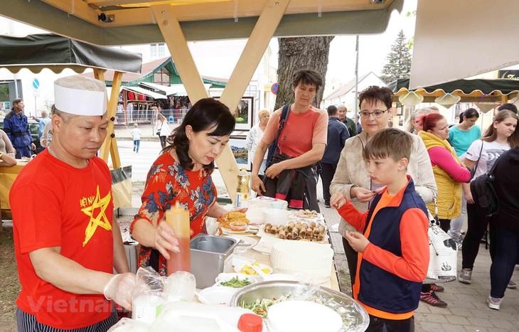 Месяц культуры Вьетнама на юге Чехии - ảnh 1