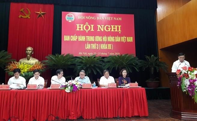 Центральное правление Союза вьетнамских крестьян содействует своим участникам в развитии производства - ảnh 1