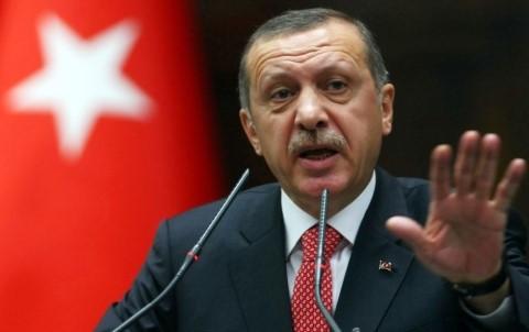 Turki berpartisipasi pada upaya melakukan kerujukan antara Qatar dan negara-negara Arab di Teluk - ảnh 1