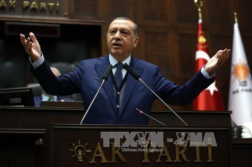 Ketegangan diplomasi di Teluk : Presiden Turki mengutuk tindakan pengucilan terhadap Qatar - ảnh 1