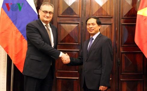 Dialog strategis dan konsultasi politik  tingkat Deputi Menlu Vietnam-Rusia - ảnh 1