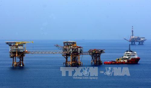 Vietnam merupakan salah satu di antara tiga mitra yang paling penting bagi Federasi Rusia di Asia - ảnh 1