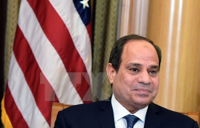 Mesir dan Palestina berbahas tentang proses perundingan damai Timur Tengah - ảnh 1
