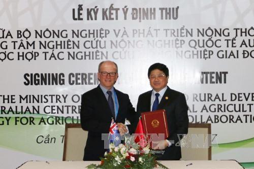 Vietnam dan Australia menandatangani protokol tentang kerjasama di bidang pertanian - ảnh 1