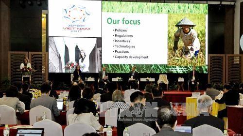 APEC-2017: Pekan Ketahanan Pangan dan Dialog Kebijakan tingkat tinggi tentang ketahanan pangan dan pertanian yang berkesinambungan,beradaptasi dengan perubahan iklim - ảnh 1